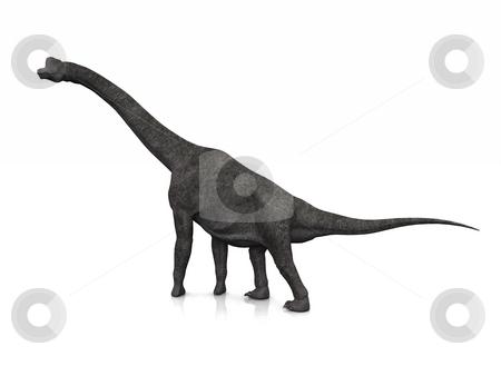 Brachiosaurus stock photo, A Brachiosaurus poses on a slightly reflective floor. by Allan Tooley