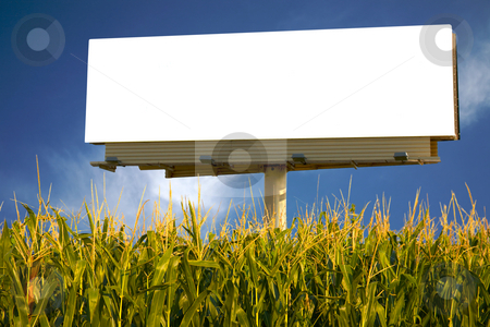 Billboard in a field of corn stock photo, Empty billboard in a field of corn for you to advertise your message by Mitch Aunger