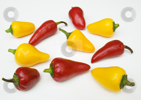 Peppers stock photo, Lot of red and yellow peppers on a clear background. by Sinisa Botas