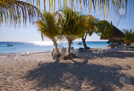 Caribbean shady palm beach stock photo, Tropical beach with palm and soft shade in the sand and sunlight in the sea by Karin Claus