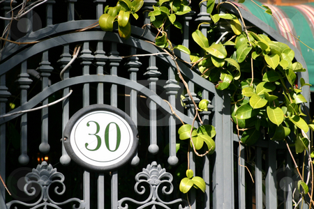 Door 30 stock photo, Iron door with the number 30 and some green by Henrik Lehnerer