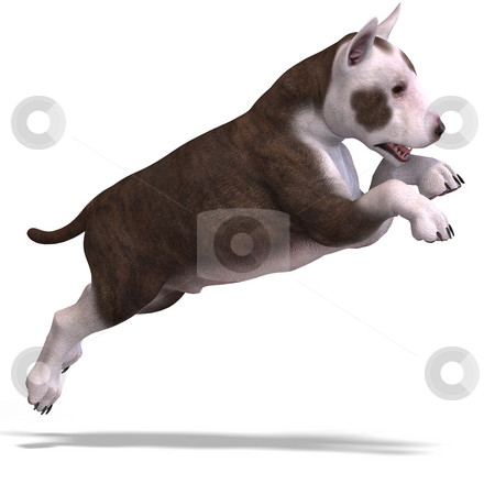 Cute puppy terrier stock photo, Very cute young dog over white with Clipping Path by Ralf Kraft