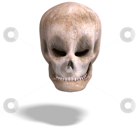 Toon skull  is watching you stock photo, Funny toon pirate head is looking at you with Clipping Path by Ralf Kraft