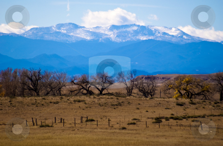 Rocky Mountain autumn stock photo, Cottonwood trees on the high plains east of the Rockies. by RCarner Photography