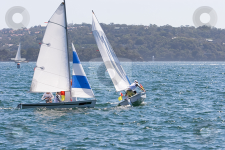 Sailing on the Harbour stock photo, Sailing boats racing on the harbour by Nicholas Rjabow