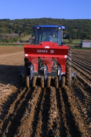 A sunny day in october - time to prepare the garlic crop stock photo, A sunny day in october in the south of France (Dr??me). A Farmer is tilling his garlic-field. The white garlic of the Dr??me-Departement is one of the most famous varieties in the world. by Michael Schweres
