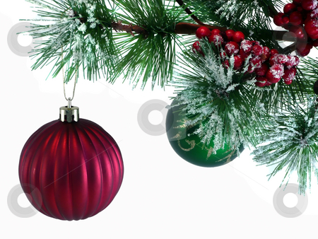 Tree Branch with Ornaments stock photo,  by Corinna Walby