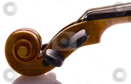 Violin Scroll and Peg Box