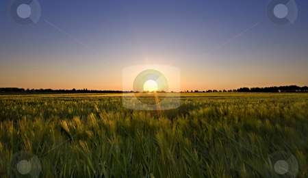 Summer glow stock photo, Summer sunset glow over rural farmlandscape by Karin Claus