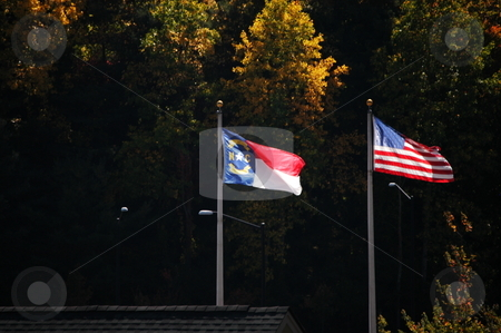 Flags of the south stock photo, North Carolina and American flag blowing in the breeze by Tim Markley