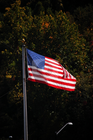 USA Flag stock photo, American flag in the breeze by Tim Markley