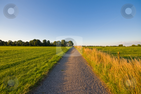 Country road  farmlandscape  stock photo, Country road  farmlandscape in the late afternoon by Karin Claus