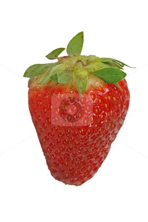 Strawberry stock photo, Strawberry by Lothar Hinz