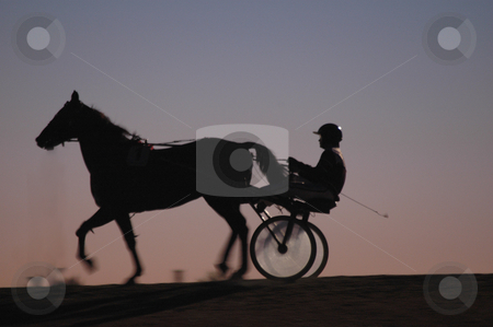 Horse and jockey in shadow at trotting race stock photo,  by Richard Juggins