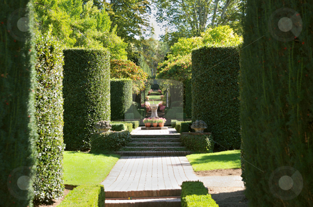Formal Garden stock photo, A view on a formal garden on a sunny day by Ivan Paunovic