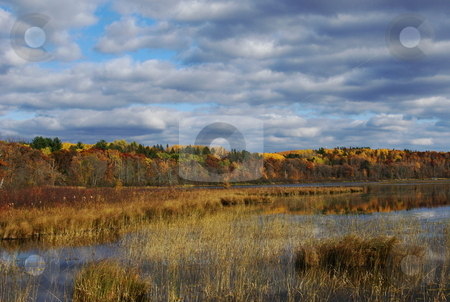 Fall color and fantastic sky stock photo, A small corner of a Minnesota lake basks in the warm glow of afternoon sunshine and the full color of fall, enhanced by a beautiful sky. by Dennis Thomsen