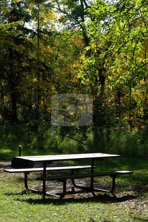 Deserted Picnic Table stock photo, Sunlight bathes a picnic table on a early fall morning in a very shady area of Jay Cooke State Park near Thompson, Minnesota. by Dennis Thomsen