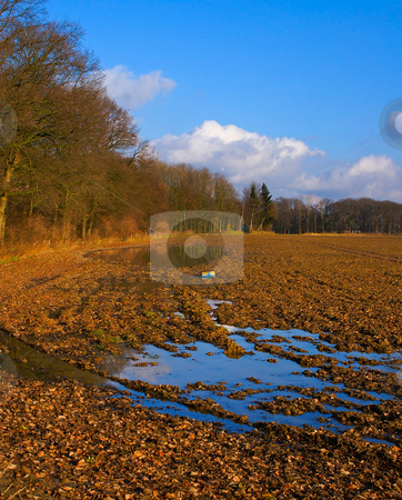 Rural autumn stock photo, Rural farmland in an autumn environment with blue sky on a sunny day by Karin Claus