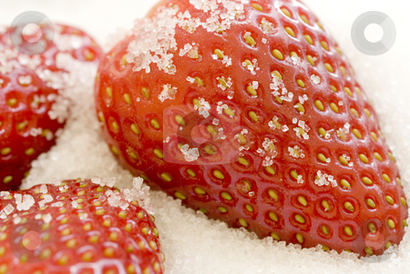 Sugared strawberries stock photo, High key image of strawberries coated in sugar by Stephen Gibson