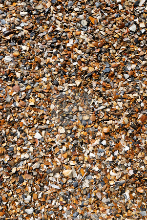 Sand and shells on the beach stock photo, Details of wet clean beach. by Wino Evertz