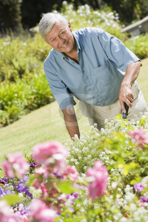 Senior man working in garden stock photo, Senior man working in garden using trowel by Monkey Business Images
