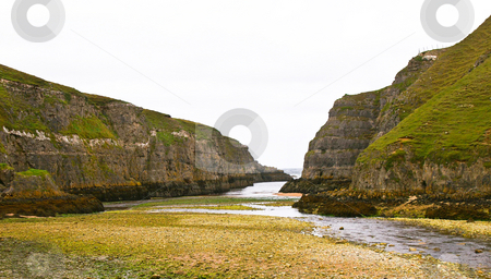 Low tide   stock photo, Cliffs covered with grass with low tide by Karin Claus