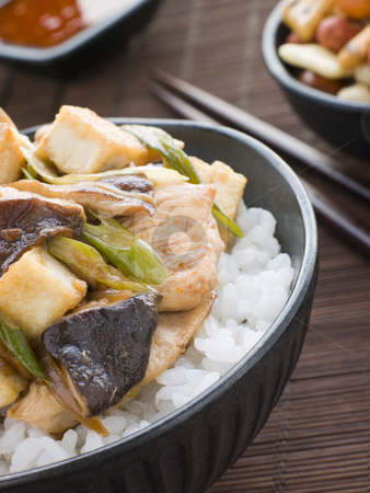 Chicken and Mushroom Donburi with Fried Tofu stock photo, Bowl of Chicken and Mushroom Donburi with Fried Tofu by Monkey Business Images