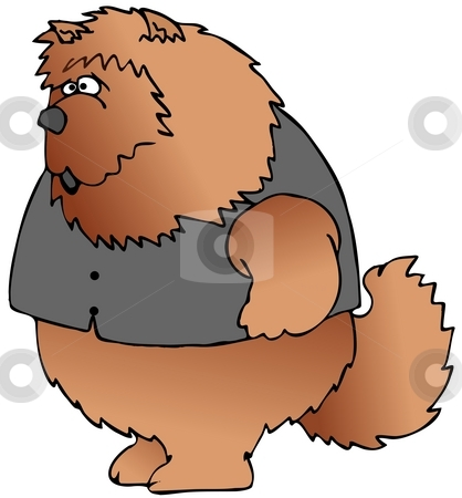 Chow Dog In A Vest stock photo, This illustration depicts a Chow chow dog wearing a black vest. by Dennis Cox