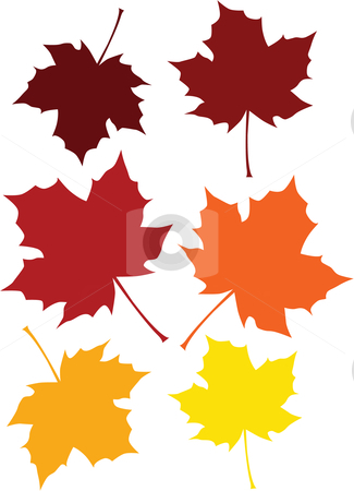 Fall Colored Leaves stock vector clipart, Vector illustration of a maple leaf is six different fall by Inge Schepers
