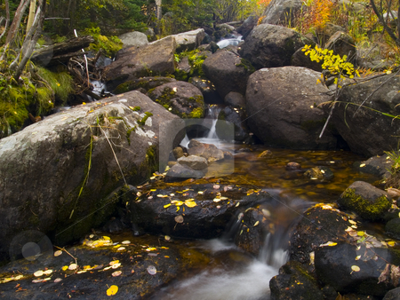 Mill Creek Autumn stock photo, Mill Creek Basin Trail - Rocky Mountain National Park by John McLaird