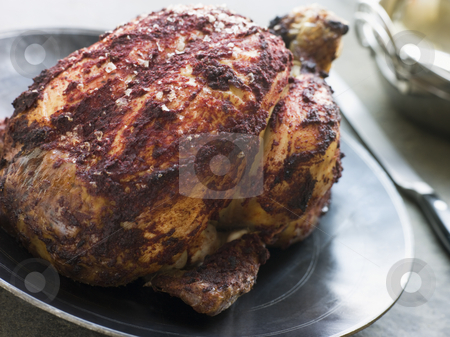 Roast Tandoori Chicken stuffed with Keema stock photo, Plate of Roast Tandoori Chicken stuffed with Keema by Monkey Business Images