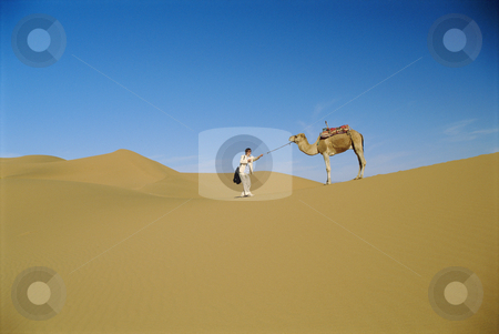 Man in desert with stubborn camel stock photo,  by Monkey Business Images