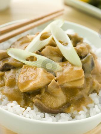 Chicken and Mushroom Curry With Koshihikari Rice stock photo, Bowl of Chicken and Mushroom Curry With Koshihikari Rice by Monkey Business Images