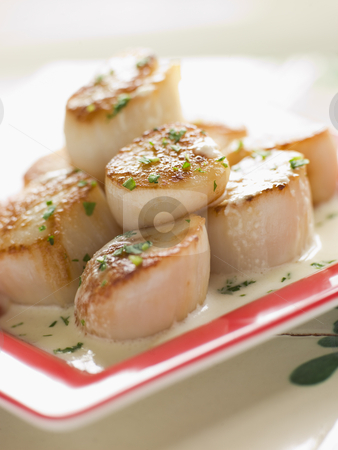 Seared Scallops with Cava Cream and Herb Sauce stock photo,  by Monkey Business Images