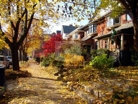 Fall sidewalk scene stock photo, Street sidewalk in autum colorful leaves by CHERYL LAFOND