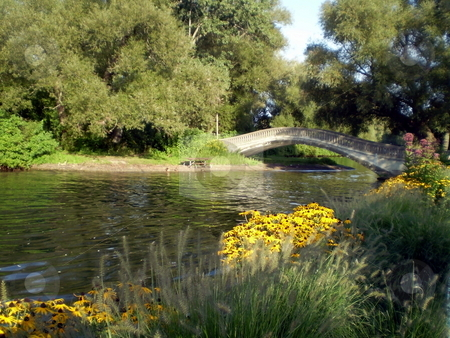 Stone Bridge Over Pond stock photo, Stone bridge over pond with flowers and vegetation by CHERYL LAFOND