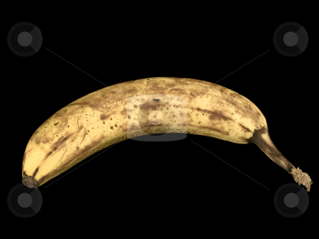 American Plenty, Still Life In Detail, Banana stock photo, A banana photographed over a jet black background.  The twelvth image, and eithth constituent object image of the American Plenty, Still Life In Detail series of images by Gary W. Sherwin