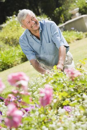 Senior man working in garden stock photo, Senior man working in garden using trowel by Monkey Business Images