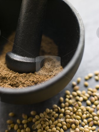 Coriander Powder in a Pestle and Mortar with Coriander Seeds stock photo, Close up of Coriander Powder in a Pestle and Mortar with Coriander Seeds by Monkey Business Images