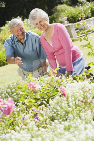 Senior couple working in garden stock photo, Senior couple working together in garden by Monkey Business Images