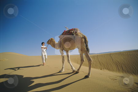 Woman leading camel across desert stock photo,  by Monkey Business Images