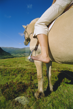 Young woman on horse stock photo,  by Monkey Business Images