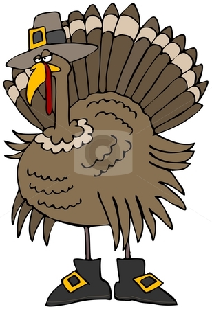 Turkey Pilgrim stock photo, This illustration depicts a Tom turkey dressed as a pilgrim. by Dennis Cox