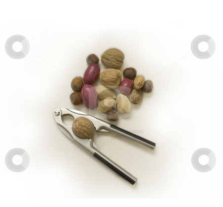 Nutcracker with nuts stock photo, A nutcracker with a variety of nuts by Dunja Bond