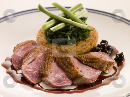 Breast of Duck, with Rosti Potato and Cassis Jus stock photo,  by Monkey Business Images