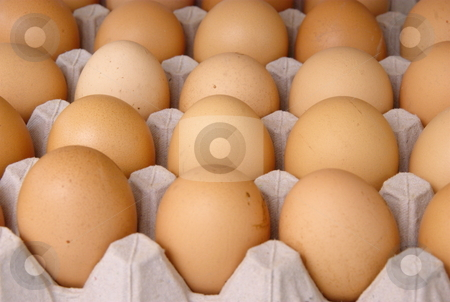 Raw eggs stock photo, Plenty of eggs in paper container. Raw food. by Milsi Art
