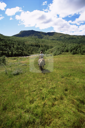 Rear view of young woman riding horse in rural setting,  stock photo,  by Monkey Business Images