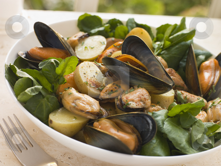 Mussel Watercress and Potato Salad stock photo,  by Monkey Business Images