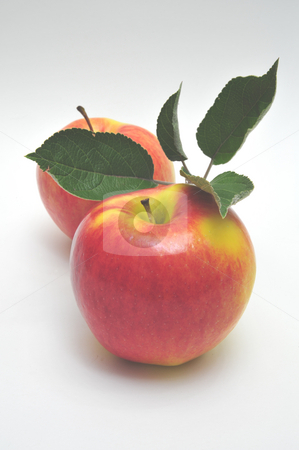 Yellow And Red Apple stock photo, Two colorful apples and leaves on a light colored background by Lynn Bendickson