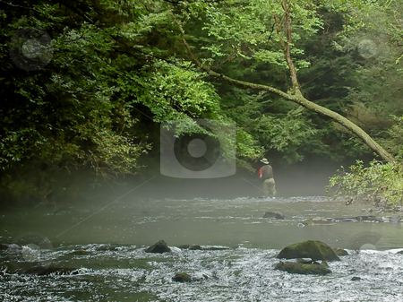 Fishing The Fog Bank stock photo, A Solitary Fly Fisherman casts to wary trout hidden by the fog on a hot summer afternoon along Clark's Creek in Pennsylvania's Dauphin County. by Gary W. Sherwin